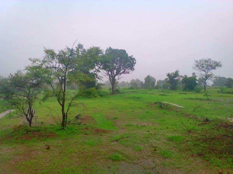 Farm Land in Farm house sale in Fulwadi,Bharuch