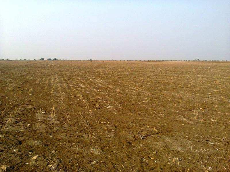 land sell for bhilad highway