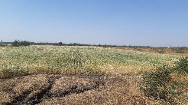 Farm land for sell in Dahej