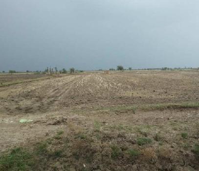 Agriculture plot