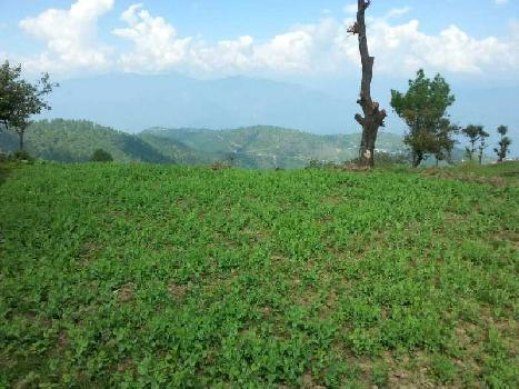 Agricultural/Farm Land For Sale In Tehri, Tehri Garhwal