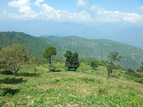 Agricultural/Farm Land for Sale in Tehri, Tehri Garhwal