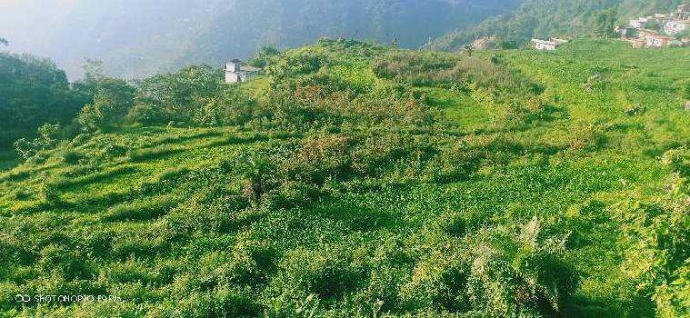 Agricultural/Farm Land for Sale in Narendra Nagar, Rishikesh