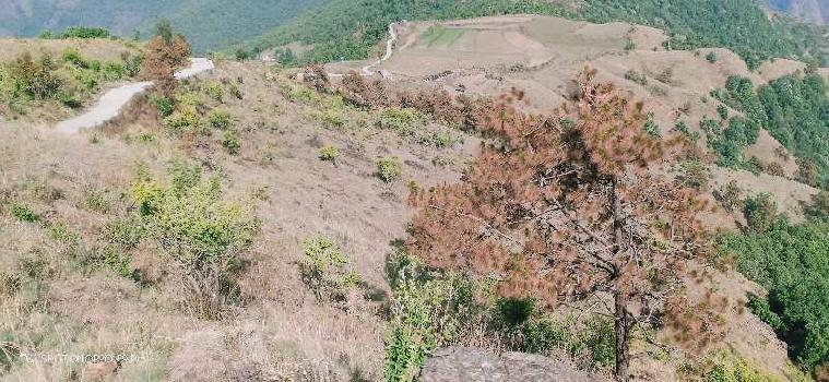 Agricultural/Farm Land for Sale in Mussoorie Road, Dehradun