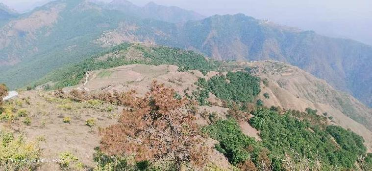 Agricultural/Farm Land for Sale in Mussoorie, Dehradun