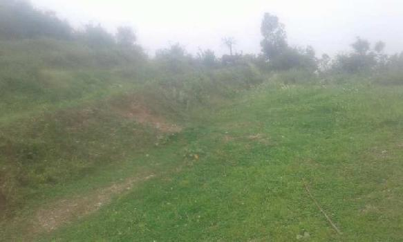 Agricultural/Farm Land for Sale in Neelkanth Road, Rishikesh