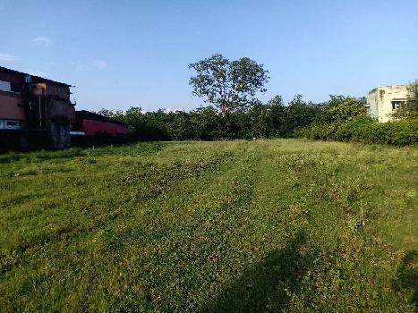 Resort, Farm House Purpose land