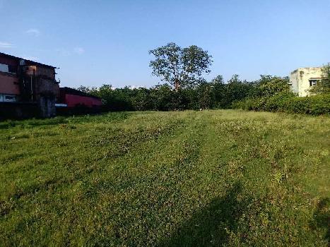 Resort, Farm House Purpose land
