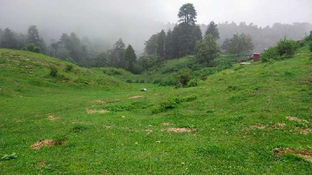 Mussoorie 160 Bigha land for sale