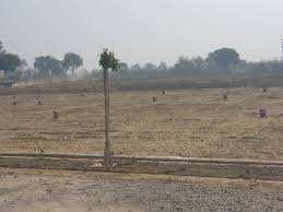 Plot For Sale In Padao, Near  Bahadurpure, Chandauli