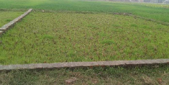 Residential Plot For Sale In  Alinagar, Chandauli. Behind Police Station.