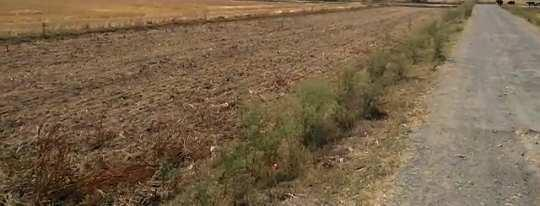 Agriculture Land For Sale In Near Dheena Railway Station Chandauli
