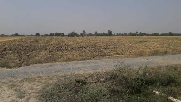 Agricultural LAnd For Sale in Chunar Mirzapur, Uttar Pradesh