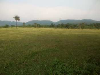 150 Acre agriculture land
