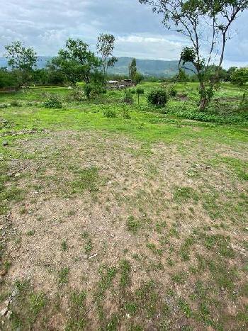 80000 Sq.ft. Residential Plot for Sale in Mulshi, Pune