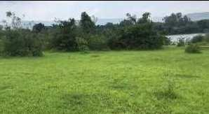 213000 Guntha Agricultural/Farm Land for Sale in Kamshet, Pune