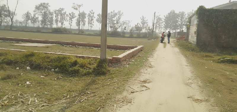 4554 Sq.ft. Residential Plot for Sale in Motihari, Champaran