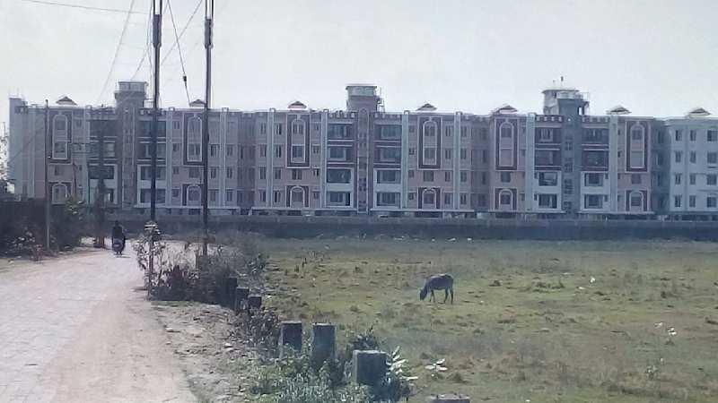 Janki village