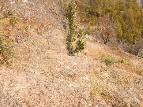 Agricultural/Farm Land for Sale in Bhimtal, Nainital