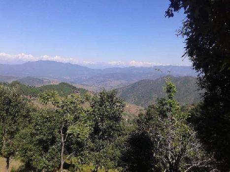 Residential Land For Sale In Paudhar, Almora, Uttarakhand.