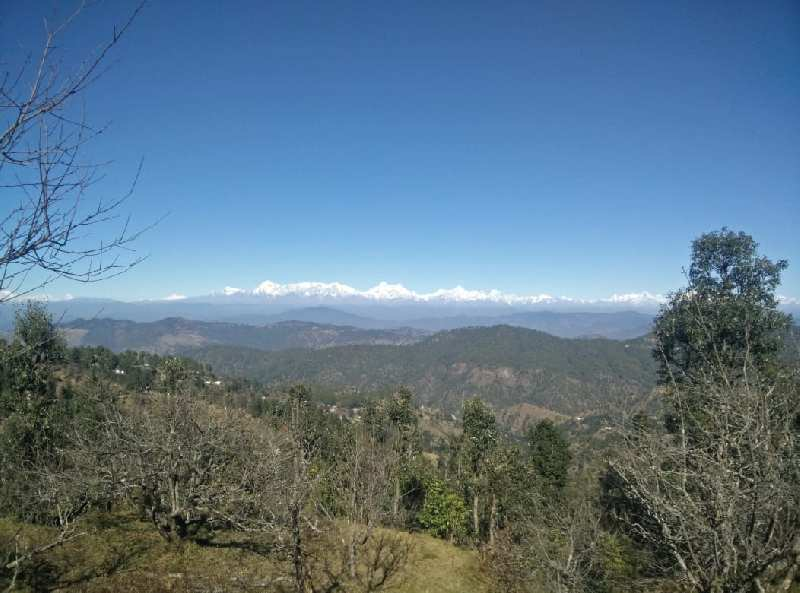 Himalaya view property