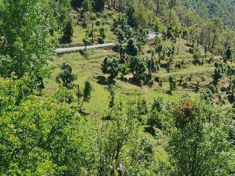 Himalaya view residential property