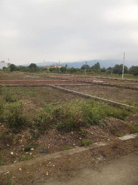 1000 Sq.ft. Residential Plot for Sale in Haldwani, Nainital