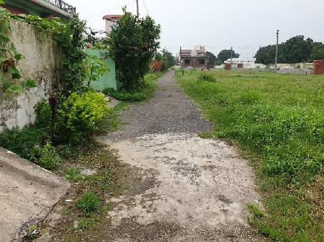 1000 Sq.ft. Residential Plot for Sale in Haldwani, Nainital