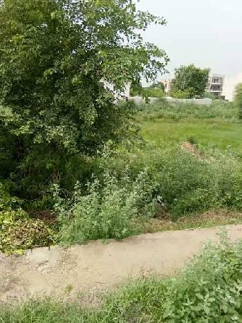 Residential Plot for Sale in Sector 9, Bahadurgarh