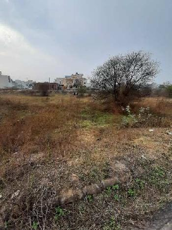 262 Sq. Yards Residential Plot for Sale in Sector 13, Bahadurgarh