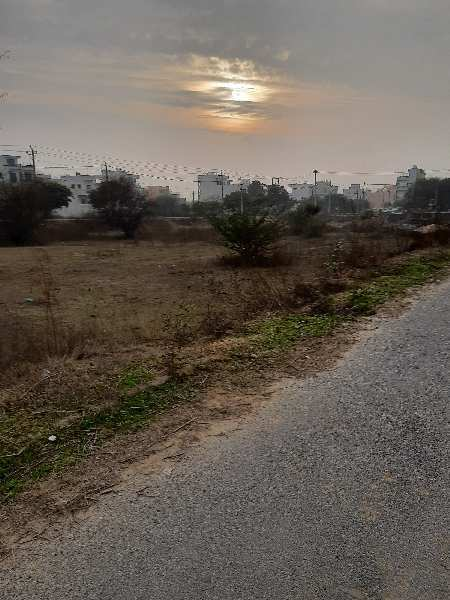 263 Sq. Yards Residential Plot for Sale in Sector 13, Bahadurgarh