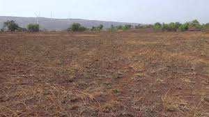 Agriculture Land For Sale In Murthal, Sonipat.