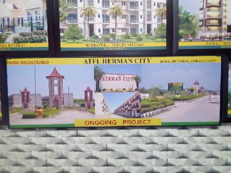 Residential Plot for Sale in Ambala