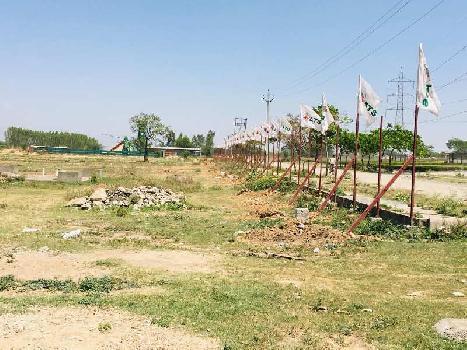 100 sq yard plot in derbassi