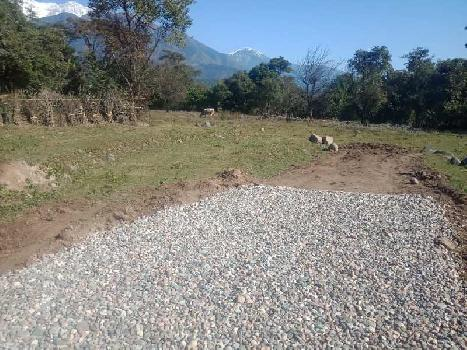 Residential Plot for Sale in Yol Cantt, Dharamshala
