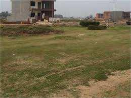 Residential Plot For Sale In Omaxe, New Chandigarh