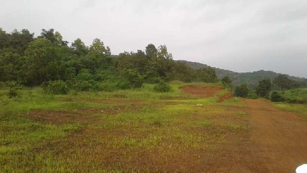 51000 Sq.ft. Residential Plot for Sale in Balewadi, Pune