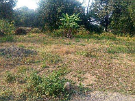 80000 Sq.ft. Residential Plot for Sale in Pancard Club Road, Pune