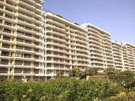 Duplex 3 BHK Apartment For Sale at TDI CITY