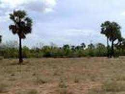 Residential Plot For Sale In Kundli