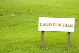 Residential Plot For Sale In NRI City, Pari Chowk