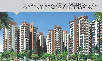 3 BHK Flats & Apartments for Sale in Sector 77, Noida