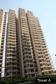 flats sale near by  Yamuna Express Way