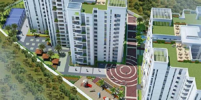 NCC Urban Gardenia