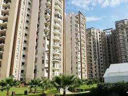 3 BHK Residential Apartment for Rent in Zirakpur, Punjab