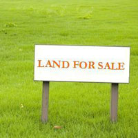 PLOT FOR SALE IN SECTOR 39 NOIDA