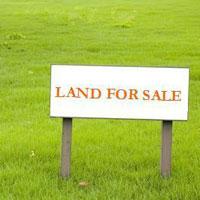 Prime location plot for sale in Noida