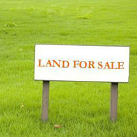 Plot for sale in sector 53 Noida