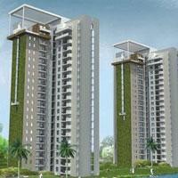3 Bhk Flat for Sale On Expressway, Noida
