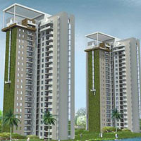 Buy Flat in Lotus Boulevard